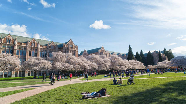 Students on the lawn of the University of Washington campus